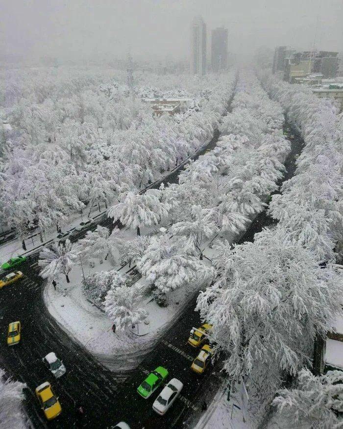 Прохладное утро в Тегеране