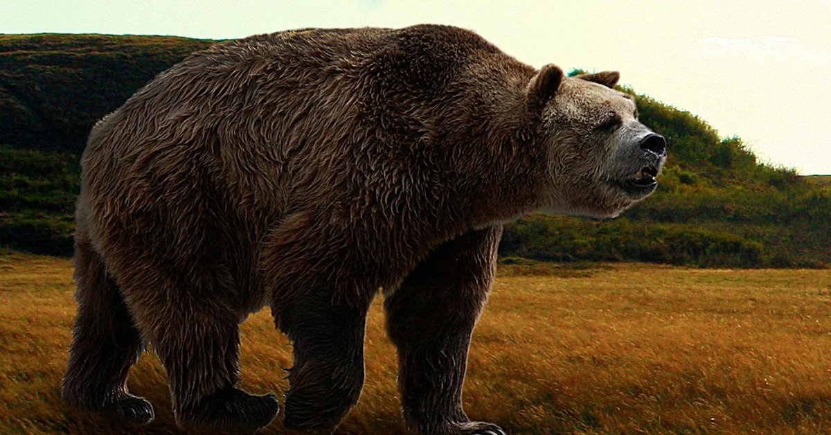 giant animals north america - 1191×670