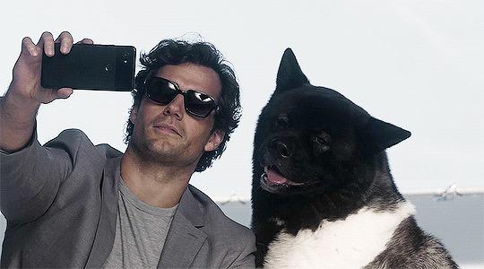 Генри Кавилл и его суперпёс Kal-El Генри Кавилл, Собака, Американская акита, Фотография, Животные, Актеры и актрисы, Мужская красота, Милота, Гифка, Длиннопост, Знаменитости