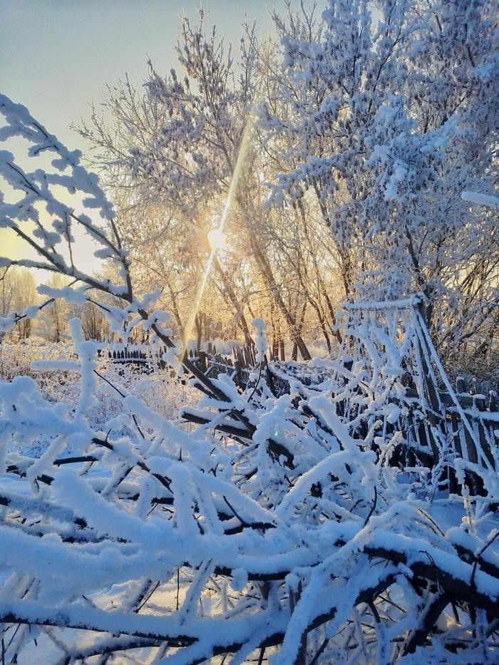 Снежное утро в деревне