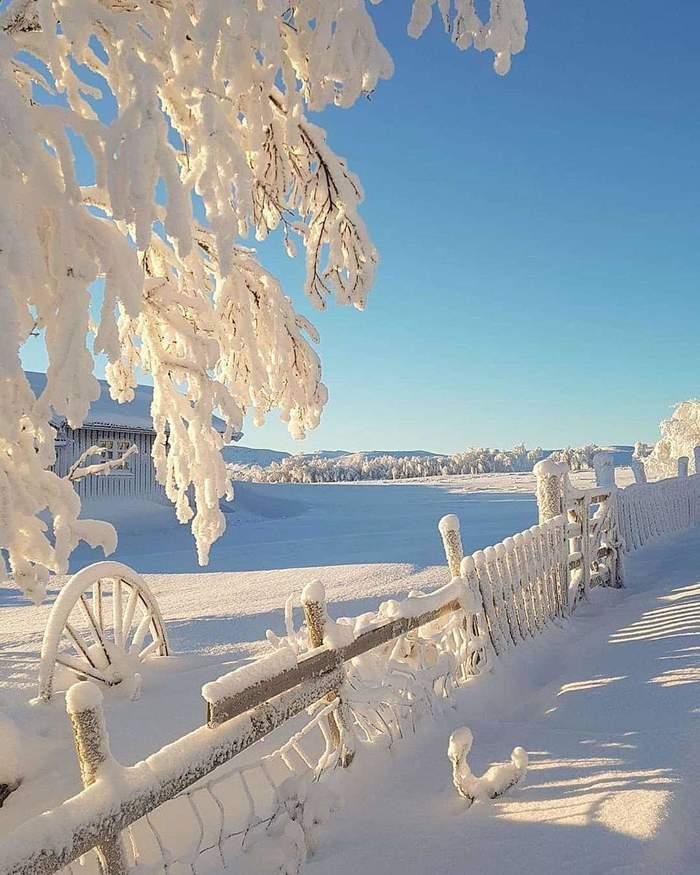 Зима!.. Крестьянин, торжествуя...