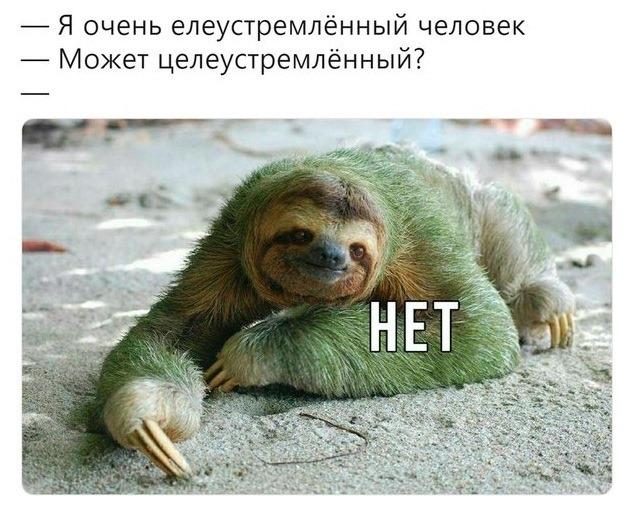 Елеустремлённый))