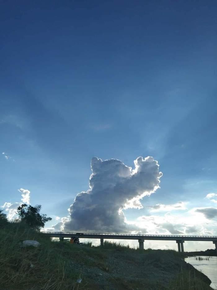 Небесный кот