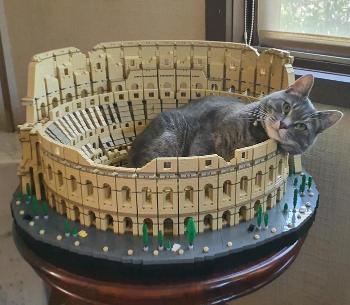 Домик для кота за 550$