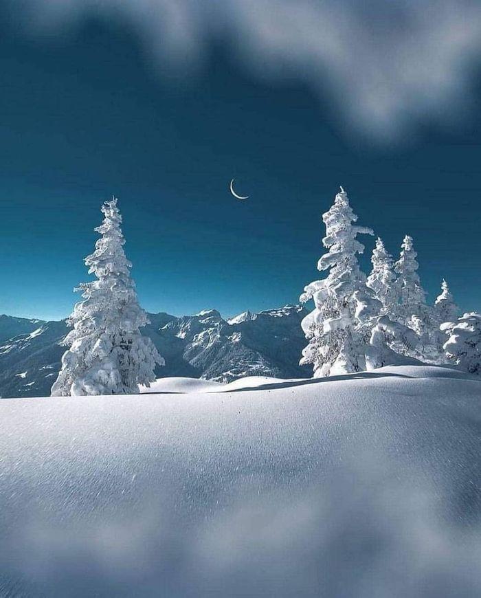 Снег, много снега