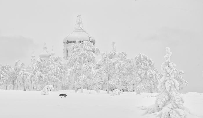 Зима в Белогорье