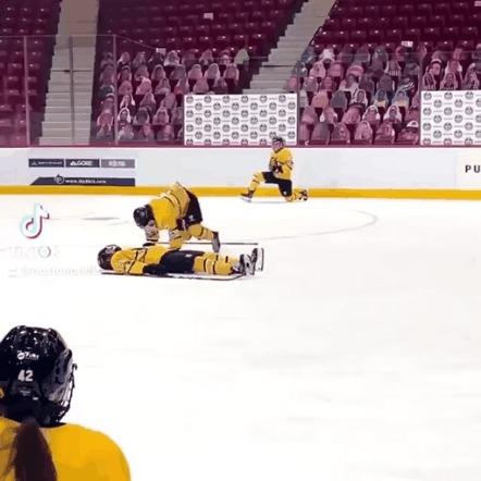 Хоккейная реанимация