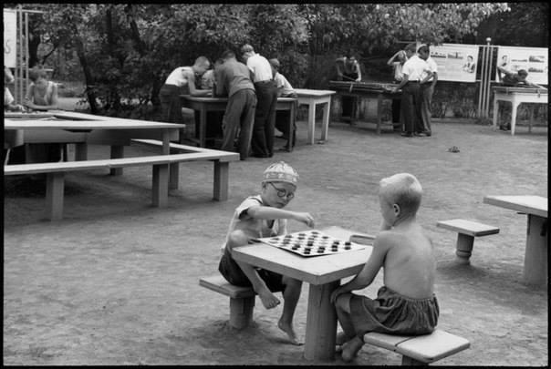 Слезы и шахматы