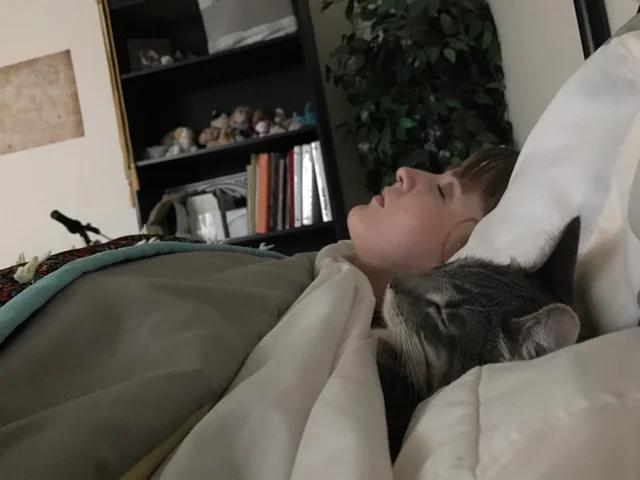 Мой кот спит с моей женой