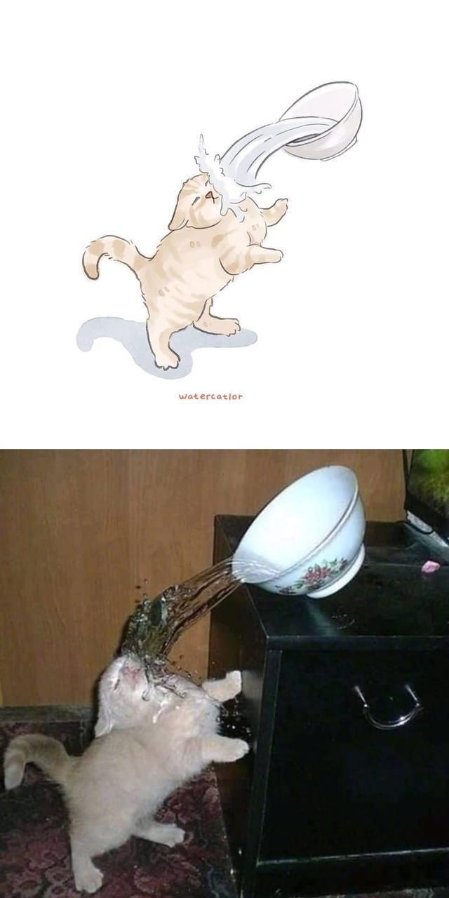 Мемные котики и их не менее мемные рисунки из японского твиттера