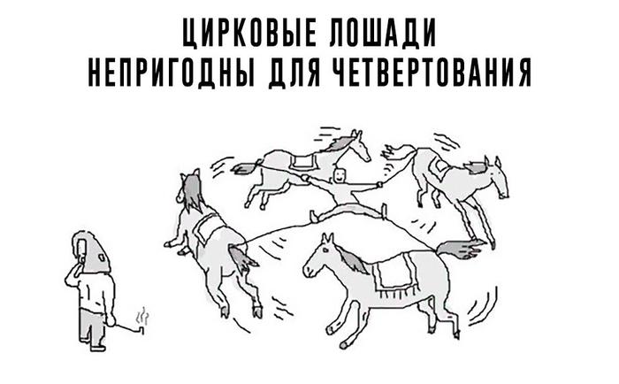 Факт о лошадях