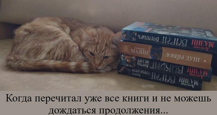 Кот-читатель