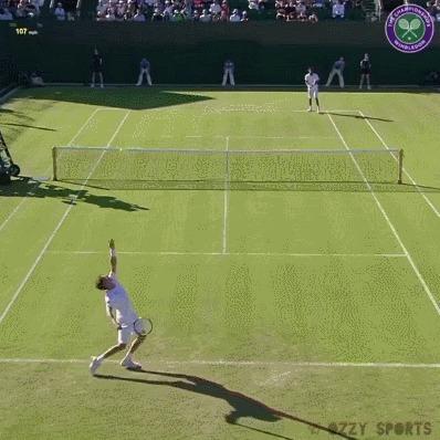 Потрясающий приём подачи от Гаэля Монфиса Спорт, Теннис, Монфис, Гифка