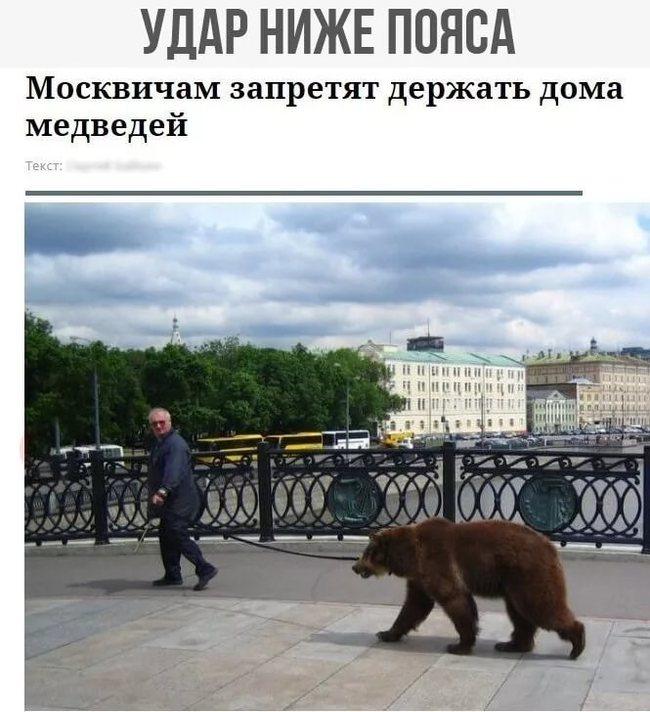 Медведь элеватор конвейер автосервис каменск уральский