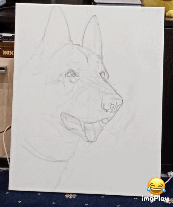 Когда не умеешь, но очень хочется Рисование, Процесс, Гифка, Собака, Кривые руки
