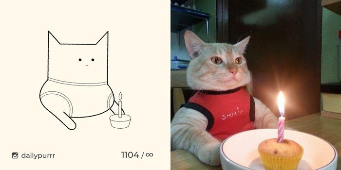 Сегодня у меня день рождения, в честь этого я представляю вам нарядного, праздничного кота!