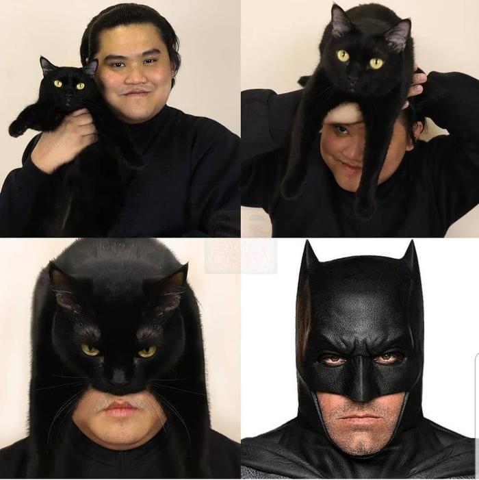 I am a catman