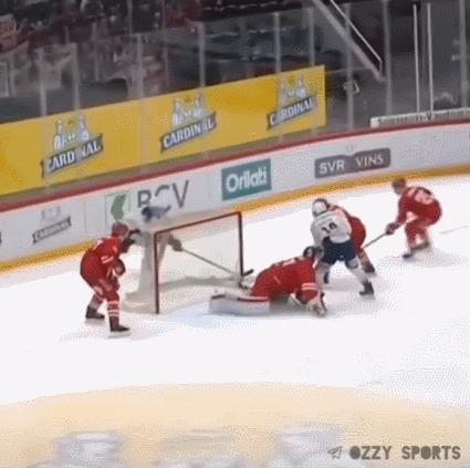 Помог вратарю Спорт, Хоккей, Сейв, Гифка