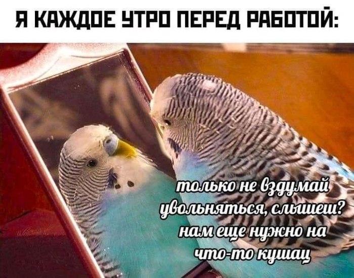 Всё будет хорошо)