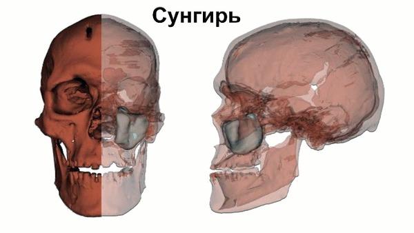 Самые древние жители Европы верхнего палеолита не были предками современных европейцев (анализ ДНК) Длиннопост, Видео, Антропология, История, Археология, Палеолит, Наука, Homo sapiens, Эволюция, Антропогенез, Гифка, Продолжение