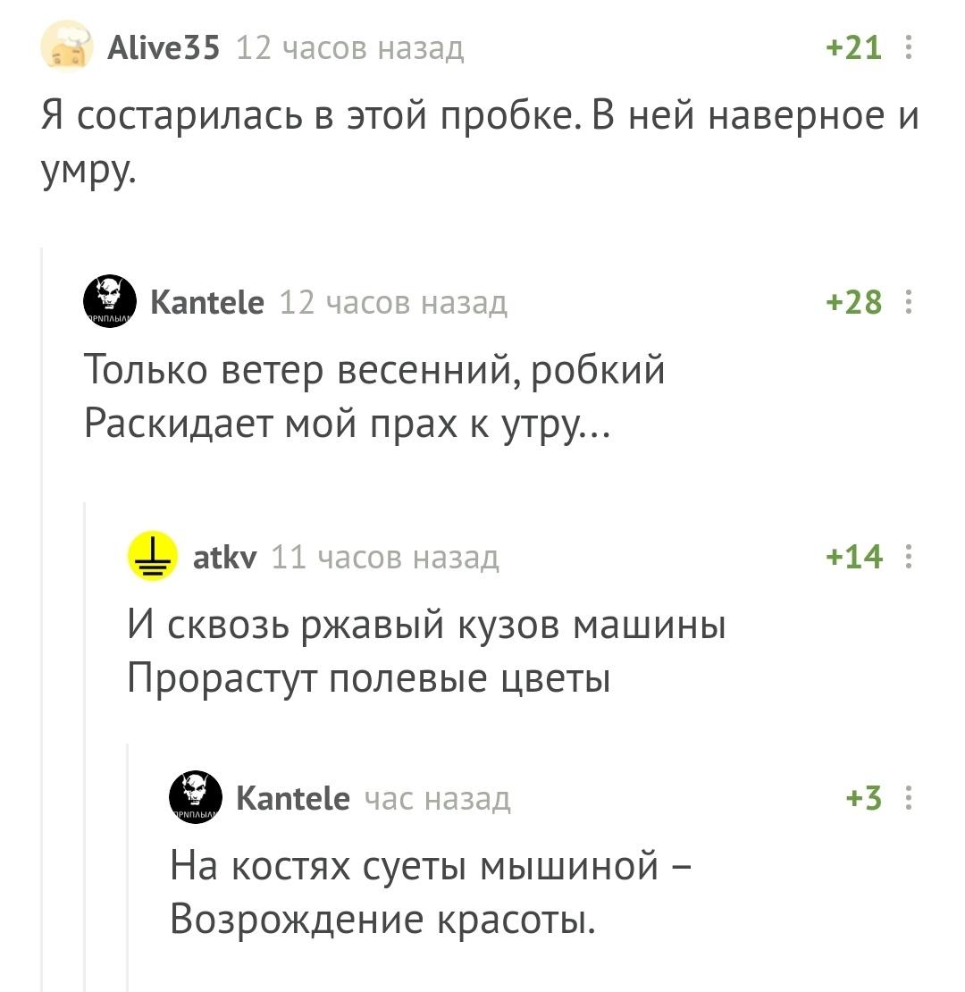 https://cs13.pikabu.ru/post_img/big/2020/04/02/7/1585827076116553144.jpg